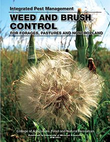 Weed and Brush Control for Forages, Pastures and Noncropland