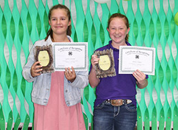 4-H awards recipients from Ray County