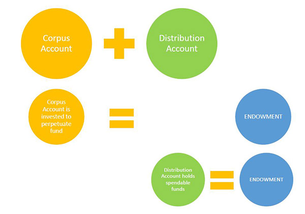 Circle graphic showcasing the two types of endowment fund accounts: Corpus account and Distribution account