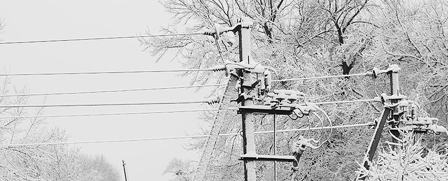 Iced over powerlines in a snowstorm.