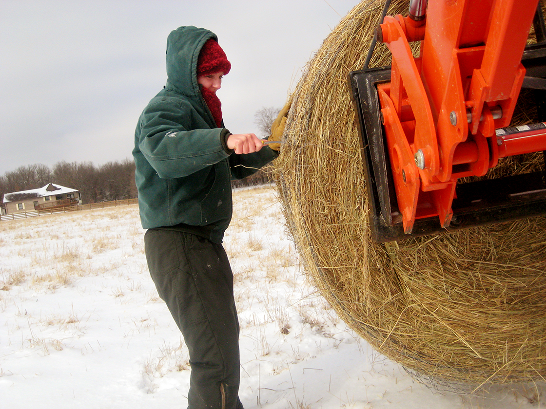 Feeding hay to cattle, especially in the cold, presents challenges for Portell. Her advanced arthritis worsens during cold months.