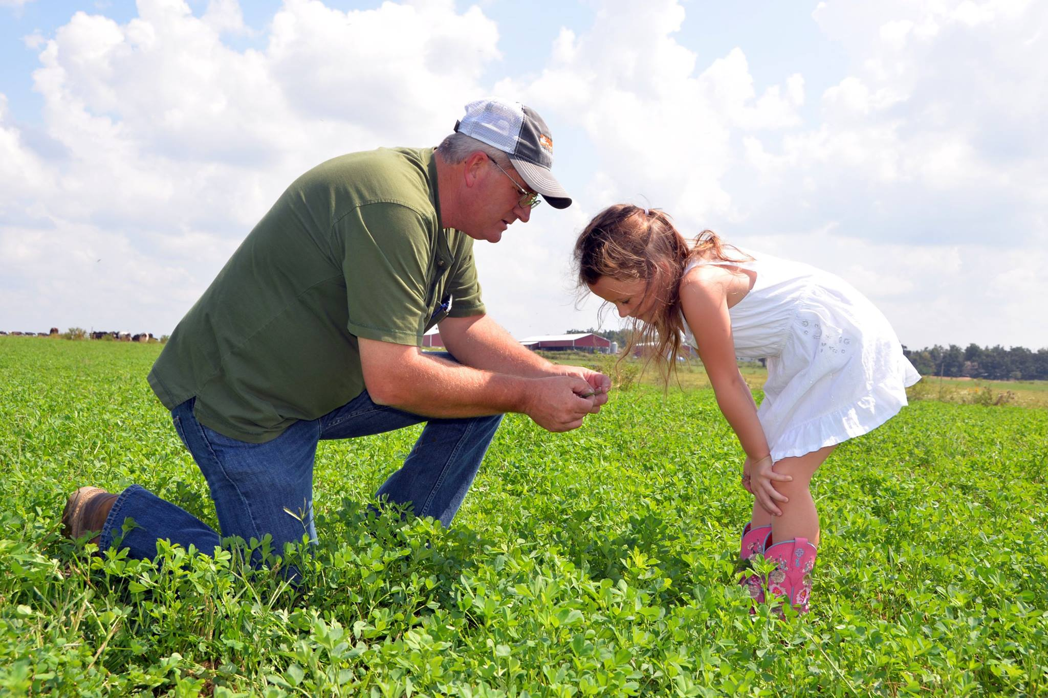 Charles Fletcher of Edgewood Dairy and Creamery tells his granddaughter about the value of good grazing forage.