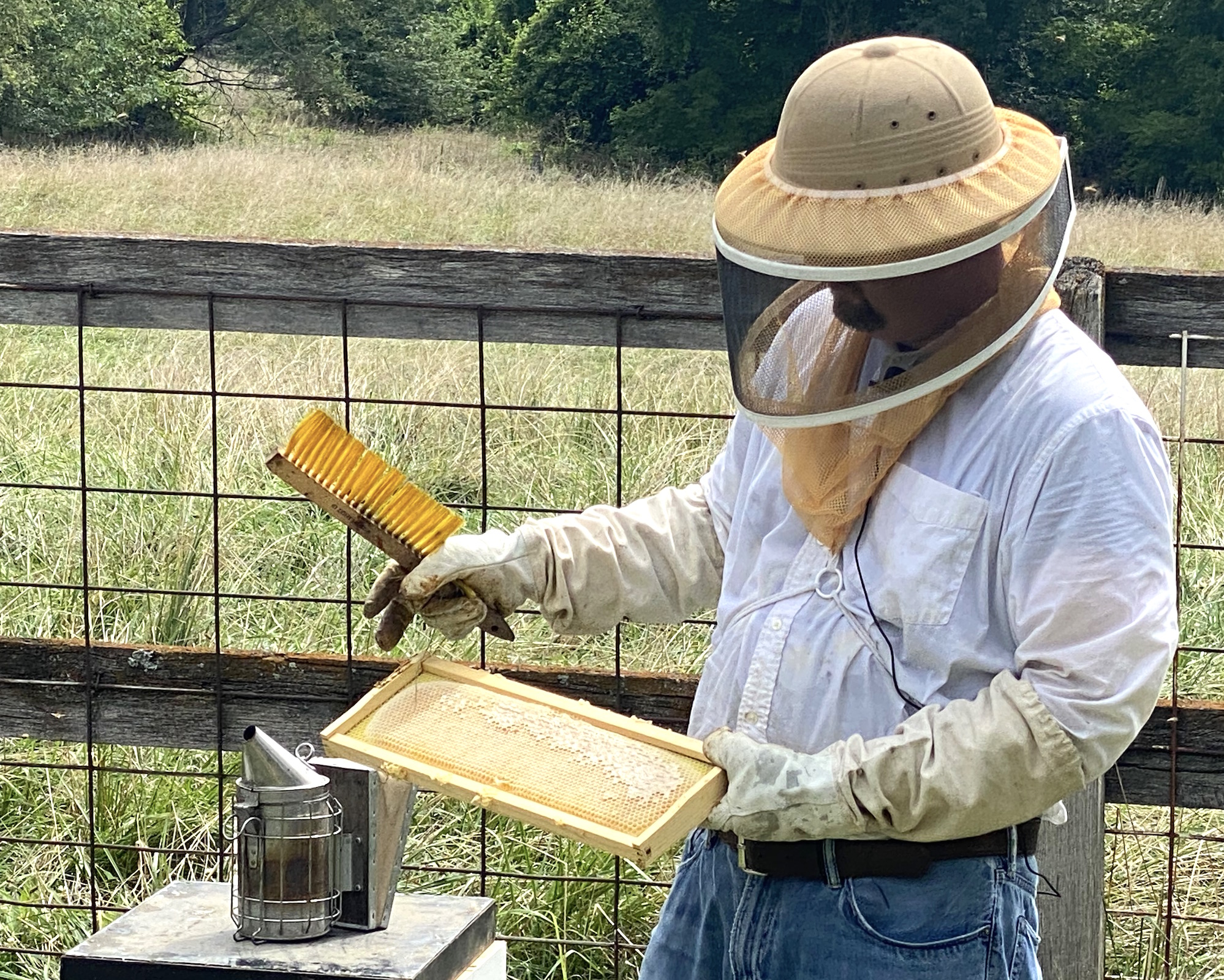 University of Missouri Extension agronomist and longtime beekeeper Travis Harper will teach the hands-on portion of the Heroes to Hives program in Missouri. The program helps veterans learn beekeeping. Photo by Tevin Uthlaut.
