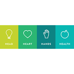 Head, Heart, Hands, Health grouped logo