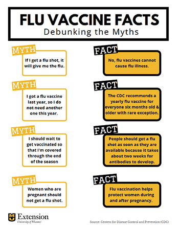 Image of Debunking Myths handout