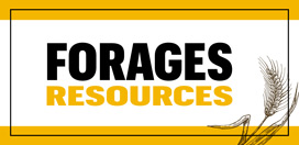 forage resources