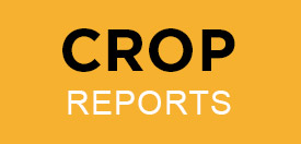 Crop reports