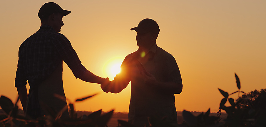 Two famrers shaking hands in a field at sunset.