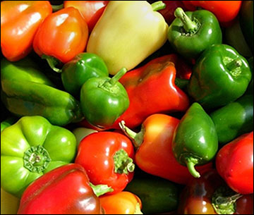 Sweet peppers vary in size, shape and color