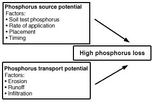 Vulnerability of a field for phosphorus loss