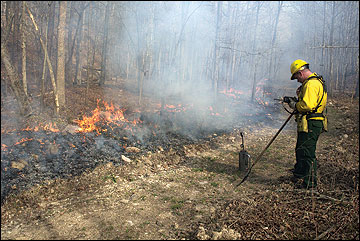 The use of a prescribed fire