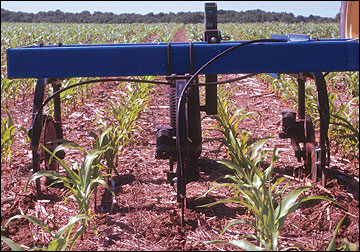 Nitrogen application to growing crops