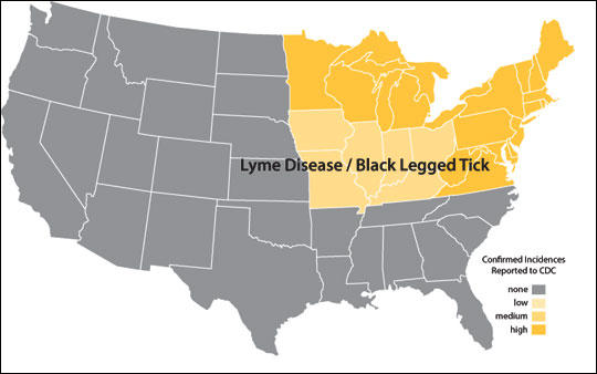 Distribution map of Lyme disease
