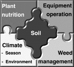 By not tilling the soil, you increase the management intensity of the remaining elements of your crop production system
