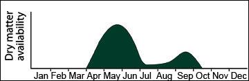 Yield distribution