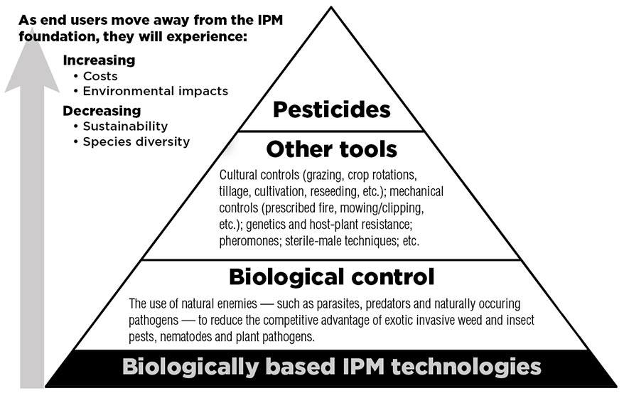 As end users move away from the IPM experience, they will experience increasing costs and environmental impacts, and decreasing sustainability and species diversity. The IPM foundation is biologically based IPM technologies. Biological control is the use of natural enemies — such as parasites, predators and naturally occuring pathogens — to reduce the competitive advantage of exotic invasive weed and insect pests, nematodes and plant pathogens. The next level up involves using other tools: cultural controls (grazing, crop rotations, tillage cultivation, reseeding, etc.); mechanical controls (prescribed fire, moving/clipping, etc); genetics and host-plant resistance; pheromones; sterile-male techniques; etc. Finally, the least preferable technique is the use of pesticides.