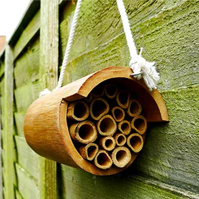 A mason bee hotel made of numerous wooden tubes inside fitted snuggly inside a large wooden tube