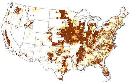 U.S. map showing that imidacloprid use was much greater in 2004.