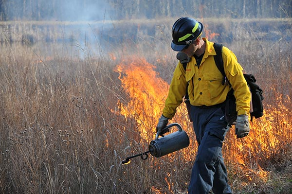 A man wearing some protective gear while walking through a field doing a controlled burn