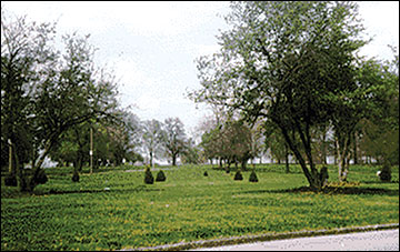 Parks and open areas are often the only links people living in urban environments have to nature